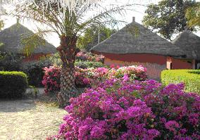Balade en Casamance...