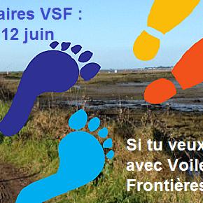 5 et 12 juin : les marches solidaires VSF 2016