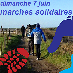 7 juin : marches solidaires VSF