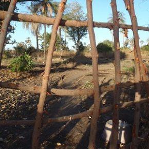 Vidéo : le Jardin de Siwo