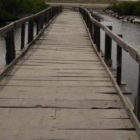 Projet VSF: épilogue du projet de la passerelle entre Nghadior et Djirnda